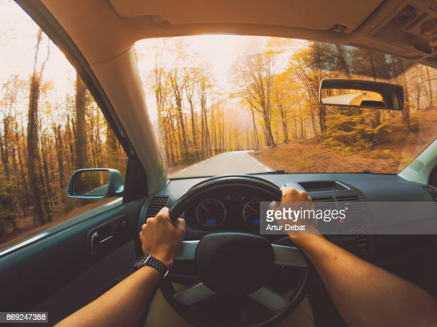 guy driving car from personal perspective in a beautiful mountain road between forest with autumn colors in the montseny nature reserve close to barcelona city during day trip. - steering wheel stock pictures, royalty-free photos & images