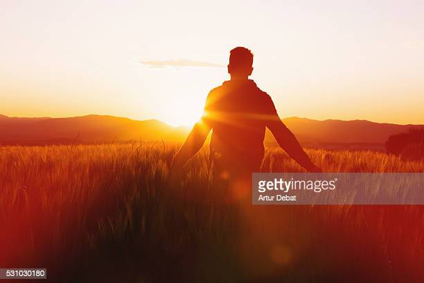 guy facing the sun on sunset in the catalan countryside from a wheat field on springtime with beautiful landscape. - staring stock photos and pictures