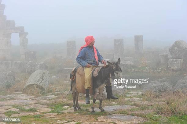 Guy riding an ass inside roman ruins in the fog