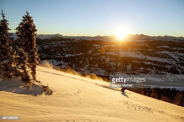 Guy skiing fresh powder during sunset.