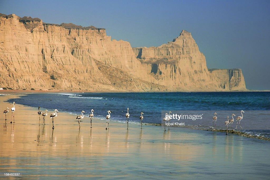 Gwadar Beach Stock Photo