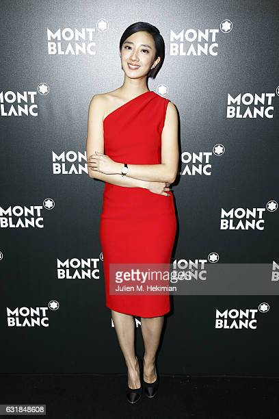 Gwei Lun Mei attends the Montblanc Gala Dinner At Brasserie Des Halles as part of the SIHH on January 16 2017 in Geneva Switzerland