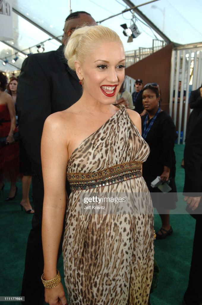The 48th Annual GRAMMY Awards - Green Carpet : News Photo