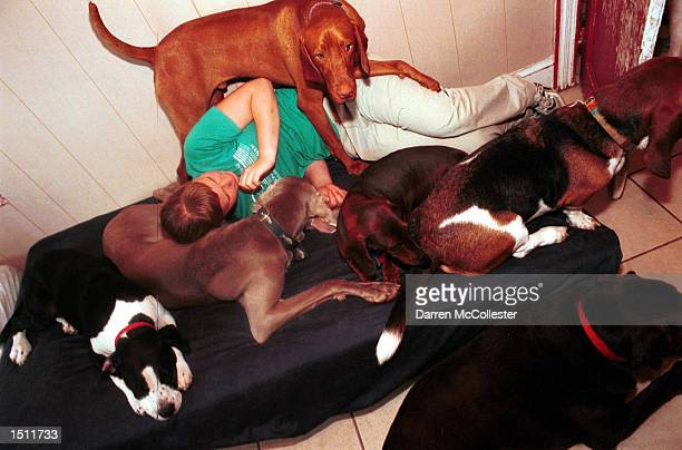 Gwyneth Sutherlin relaxes amidst a pack of dogs at Pet Companions Inc August 17 2000 in Somerville MA Pet Companions Inc is the Boston areas first...