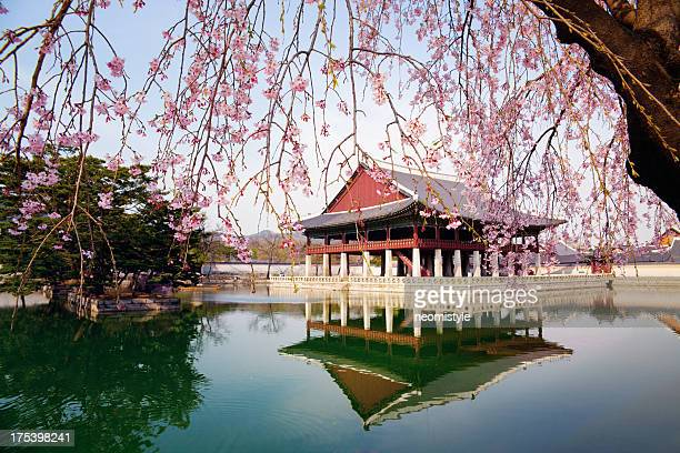gyeongbokgung palace - seoul stock pictures, royalty-free photos & images