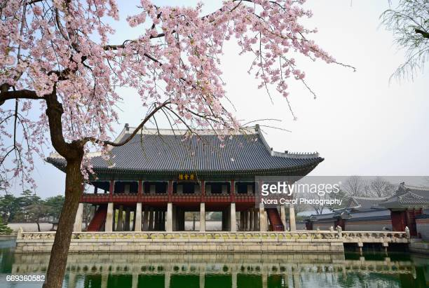 Gyeongbukgong Palace in Springtime