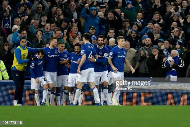 Gylfi Sigurdsson of Everton celebrates his goal with team mates during the Premier League match between Everton and Cardiff City at Goodison Park on...