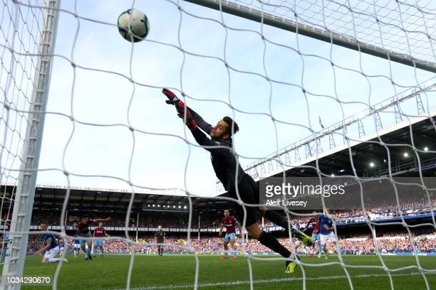 Gylfi Sigurdsson of Everton scores his team's first goal past Lukasz Fabianski of West Ham United during the Premier League match between Everton FC...