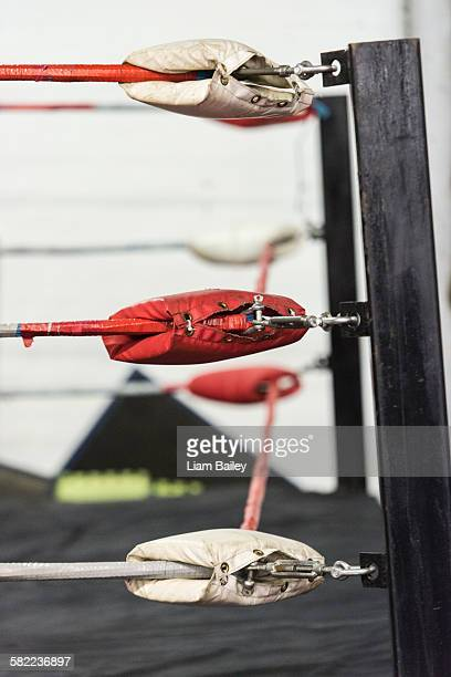 gym ropes in training gym - fighting ring stock pictures, royalty-free photos & images