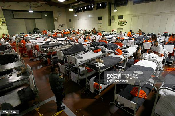 A gymnasium that has been converted to house inmates is photographed at California Institution for Men in Chino May 2011