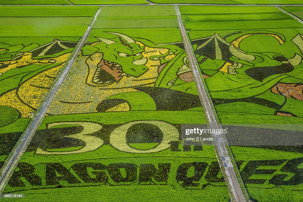 Gyoda is a mostly flat city full of rice paddies. One of these paddies has been turned into a giant artistic canvas. Different strains of rice, which grow into a variety of colors, are planted in a pattern in spring. Each year the patterns theme changes. In 2016 the theme is Dragon Quest from the game app. As the rice grows, the picture is revealed. The Japanese call this tambo art. Gyoda holds the Guiness World Record for the World's Largest Rice Paddy Art. The tanbo art of Gyoda began in 2008 with 433 locals who participated in the tanbo art rice planting event. Each year the number grow, as the image to be planned and planted is changed. This turns the entire rice field into a canvas for a huge painting that can only be fully appreciated from the nearby tower.