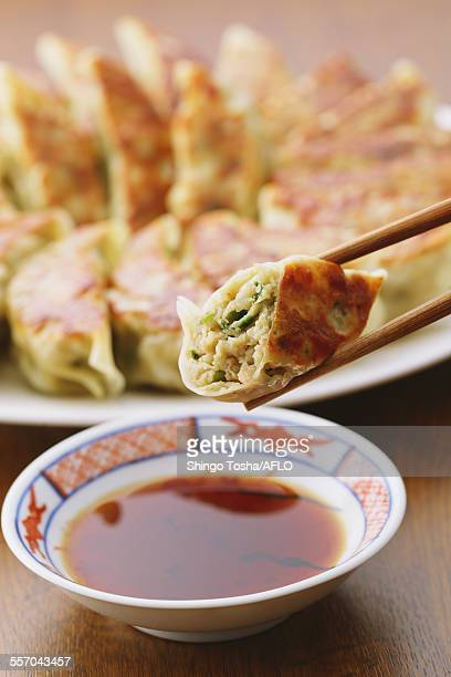 gyoza dumplings - momo challenge stock photos and pictures