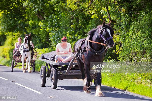 A Gypsey travelling towards the Appleby Horse Fair on a horse and trap, checks her mobile phone near Kirkby Lonsdale, Cumbria, UK.