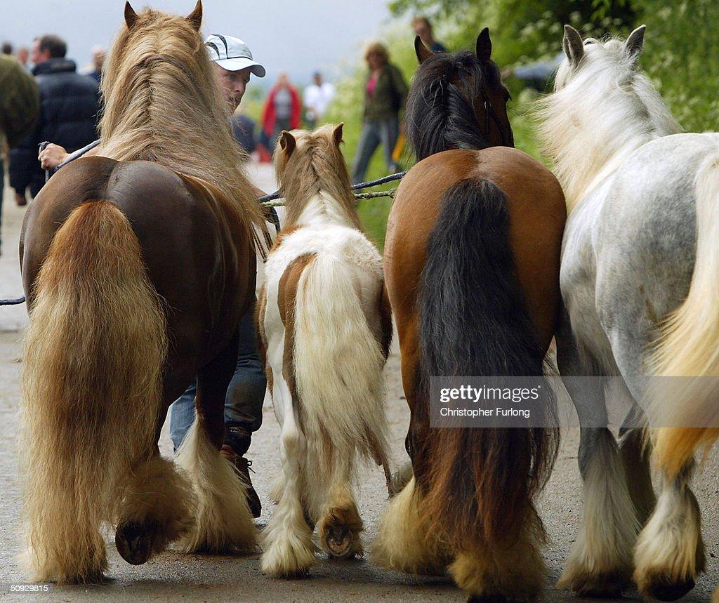 Gypsies Gather For Appleby Horse Fair : Stockfoto