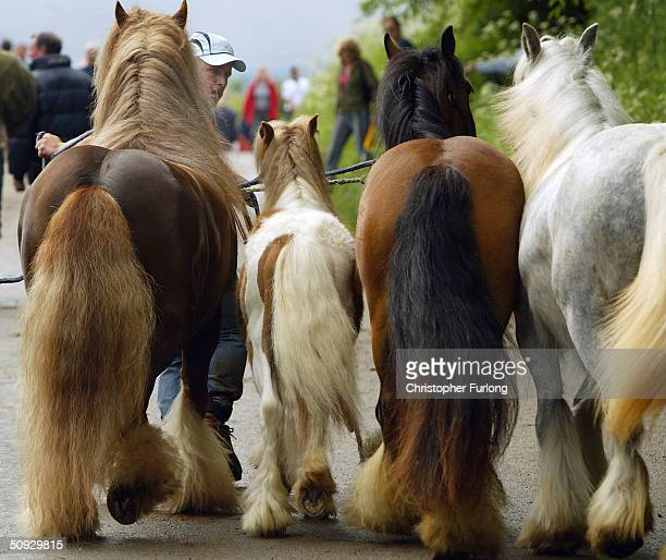 gypsies gather for appleby horse fair - mensen op de achtergrond stockfoto's en -beelden