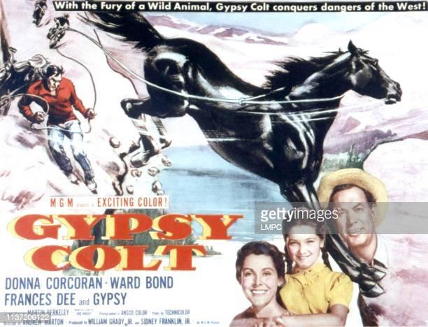 Gypsy Colt lobbycard Frances Dee Donna Corcoran Ward Bond 1953
