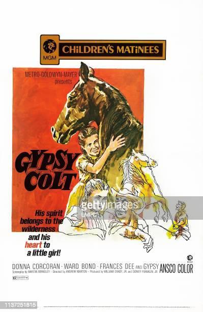 Gypsy Colt poster US poster art Donna Corcoran Ward Bond 1953