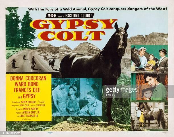 Gypsy Colt US lobbycard center from left Frances Dee Donna Corcoran Ward Bond 1953