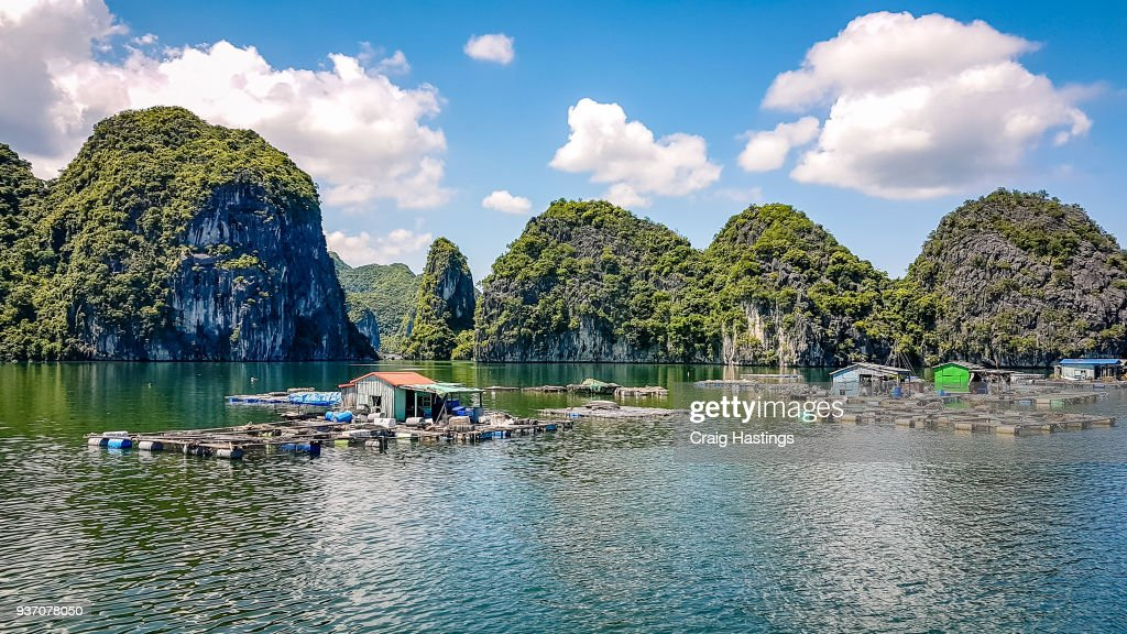Ha Long Bay North East Vietnam : Stock Photo