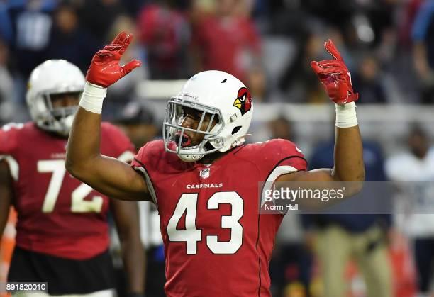 Haason Reddick of the Arizona Cardinals celebrates getting a sack on Marcus Mariota of the Tennessee Titans at University of Phoenix Stadium on...