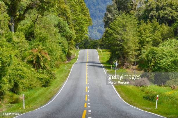 haast pass (highway 6), road through rainforest. - mountain pass stock pictures, royalty-free photos & images