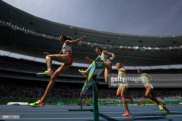 Habiba Ghribi of Tunisia competes in the Women's 3000m Steeplechase final on Day 10 of the Rio 2016 Olympic Games at the Olympic Stadium on August...