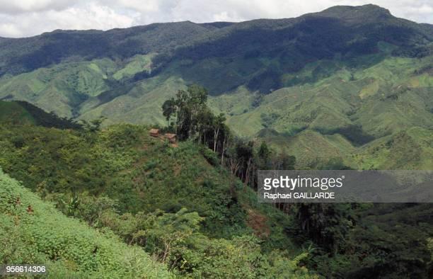Habitat isolé sur une montagne en partie victime de la déforestation avril 1992 Madagascar