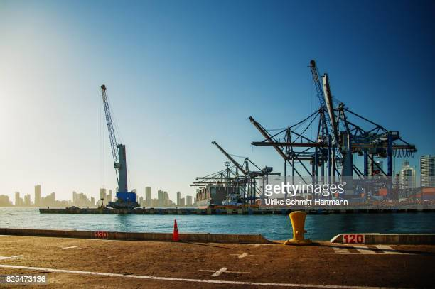 habour of cartagena - harbour stock pictures, royalty-free photos & images
