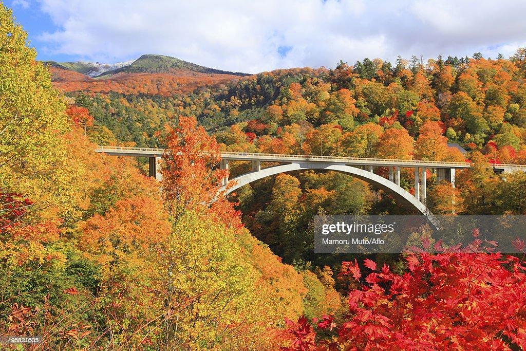 Hachimantai, Akita Prefecture, Japan : Stock Photo