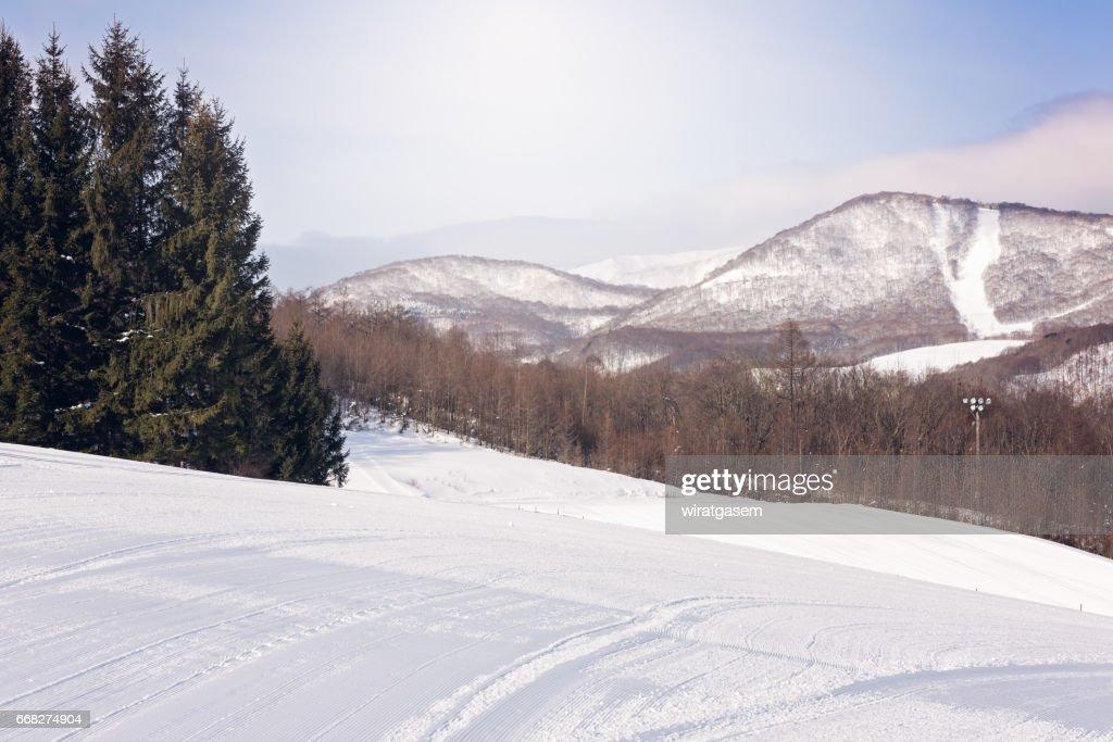 hachimantai ski resort ストックフォト getty images