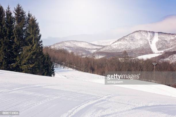 hachimantai ski resort - iwate prefecture stock photos and pictures