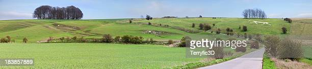 hackpen white horse panorama, wilshire, england - terryfic3d stock pictures, royalty-free photos & images