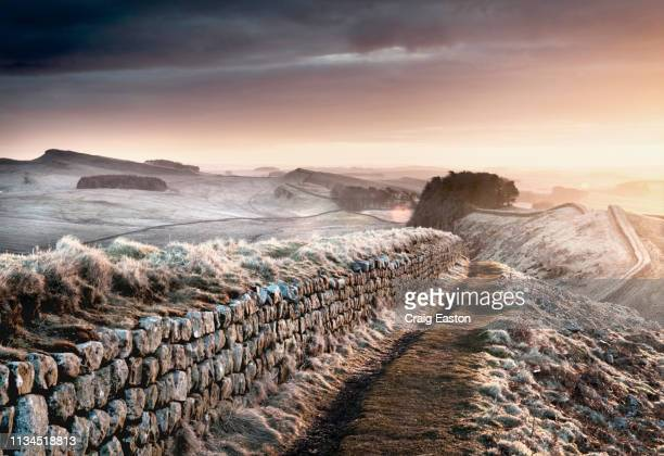 hadrian's wall, england - northumberland stock pictures, royalty-free photos & images