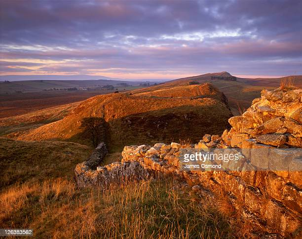 hadrians wall, marking the northernmost reaches of the roman empire stretching out across undulating northumbrian landscape at steel rigg, in northumberland national park - northumberland stock pictures, royalty-free photos & images