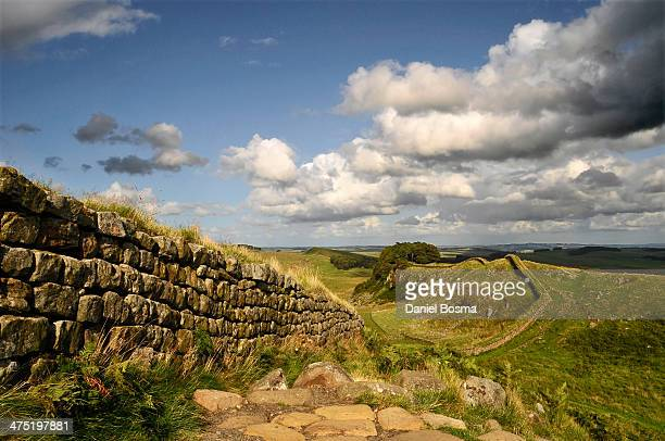 hadrian's wall - northumberland stock photos and pictures