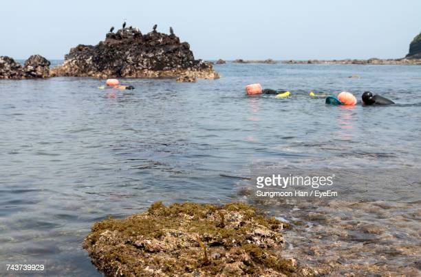 haenyeo swimming in sea against clear sky at jeju island - jeju stock photos and pictures