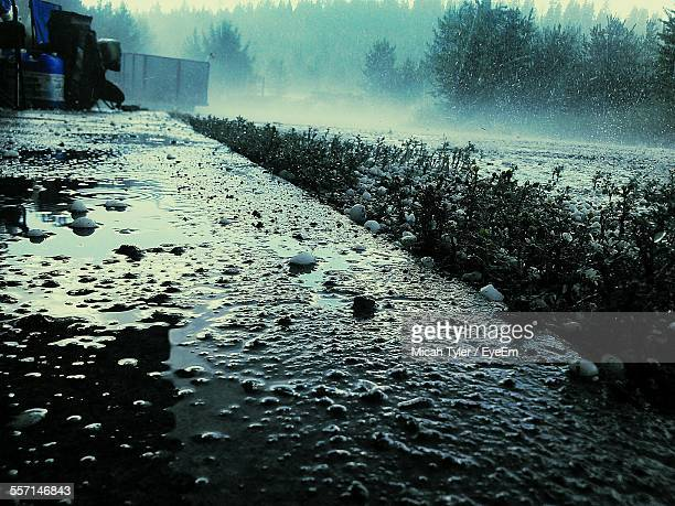 hail falling in countryside - hail stock pictures, royalty-free photos & images
