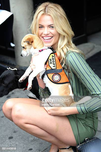 Hailey Clauson attends a Dog Adoption Event hosted by the Monmouth County SPCA and Animal Lighthouse Rescue at Dylan's Candy Bar on May 14 2016 in...