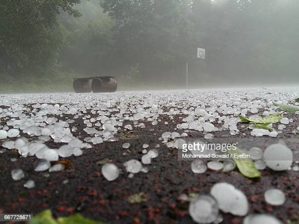 Hailstone On Road