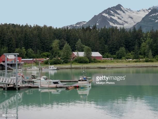 Haines Packing Company - Mud Bay Road 0006