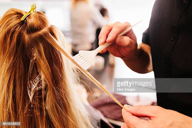 a hair colourist, a man using a paintbrush to cover sections of a womans blonde hair. - dyed hair stock pictures, royalty-free photos & images