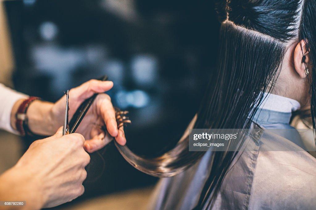Hair cutting... : Stock Photo
