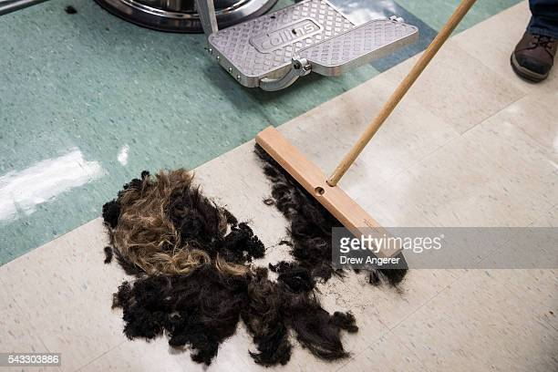 Hair is swept up at the barber shop on campus during Reception Day at the United States Military Academy at West Point June 27 2016 in West Point New...