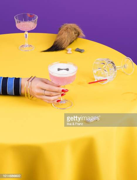 hair of the dog that bit you - hangover stock pictures, royalty-free photos & images