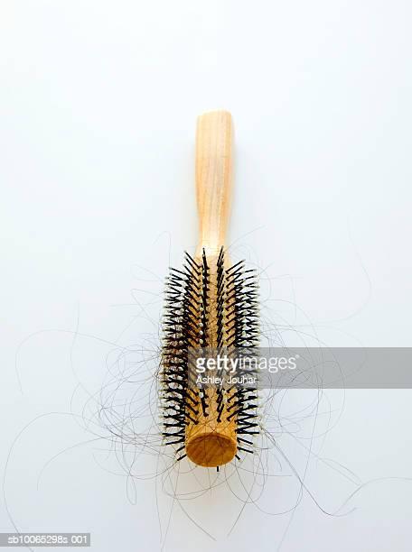Hairbrush containing loose hairs