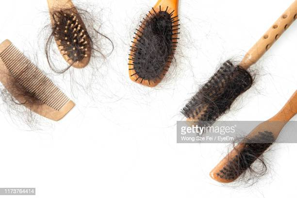 hairbrushes covered with hair against white background - hairbrush stock pictures, royalty-free photos & images