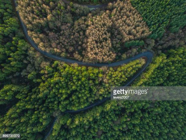 Hairpin bend from above, Tipperary, Ireland.