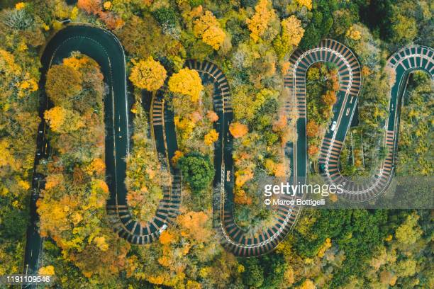 hairpin bends on winding scenic road in a forest - adversidade imagens e fotografias de stock