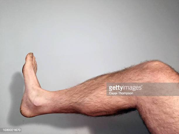 a hairy and muscular leg over a off white background - homme poilu photos et images de collection