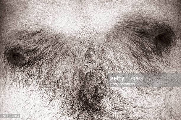 hairy chest - hairy body stock photos and pictures